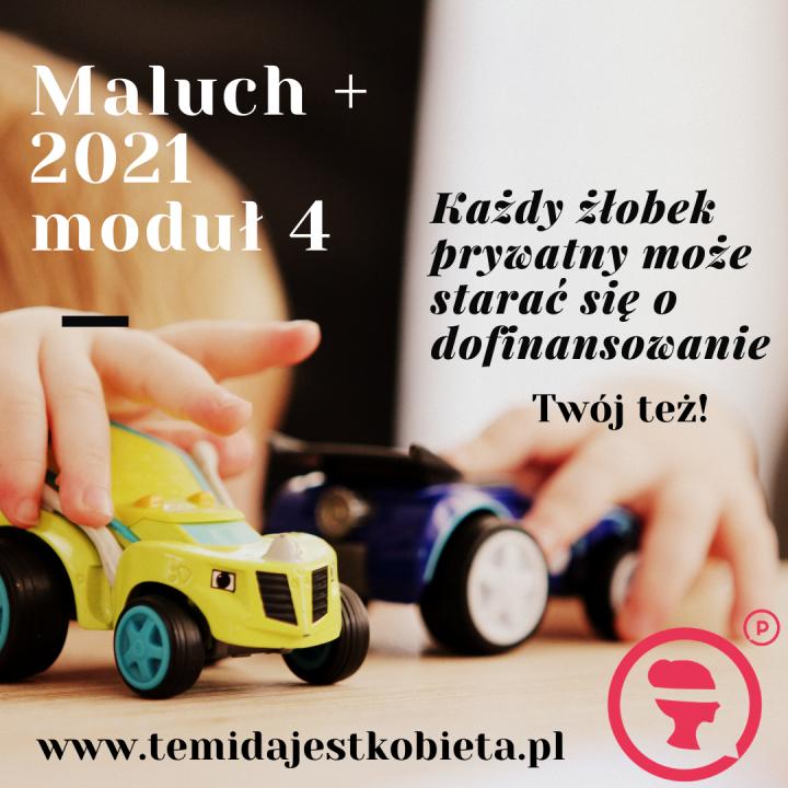 Maluch 2021
